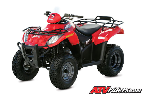 2007 Arctic Cat 250 2x4 Automatic Sport Utility Atv Model
