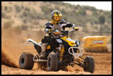 DS450 X MX ATV