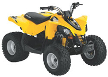 2013 DS70 Youth ATV