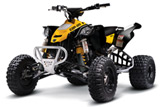 Can-Am DS450 X MX ATV
