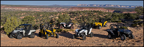 CanAm Maverick & Commder SxS / UTV Family