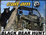 Black Bear Hunting with a Can-Am Commander 1000 XT SxS / UTV