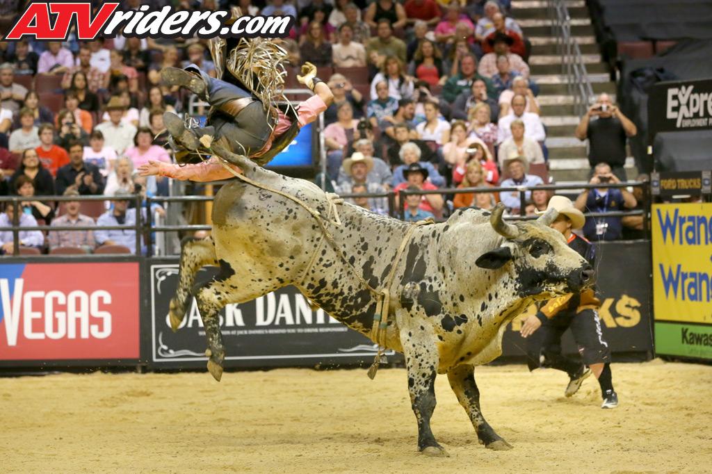 pro bull riding wallpaper