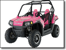 2009 RANGER RZR Passion Pink