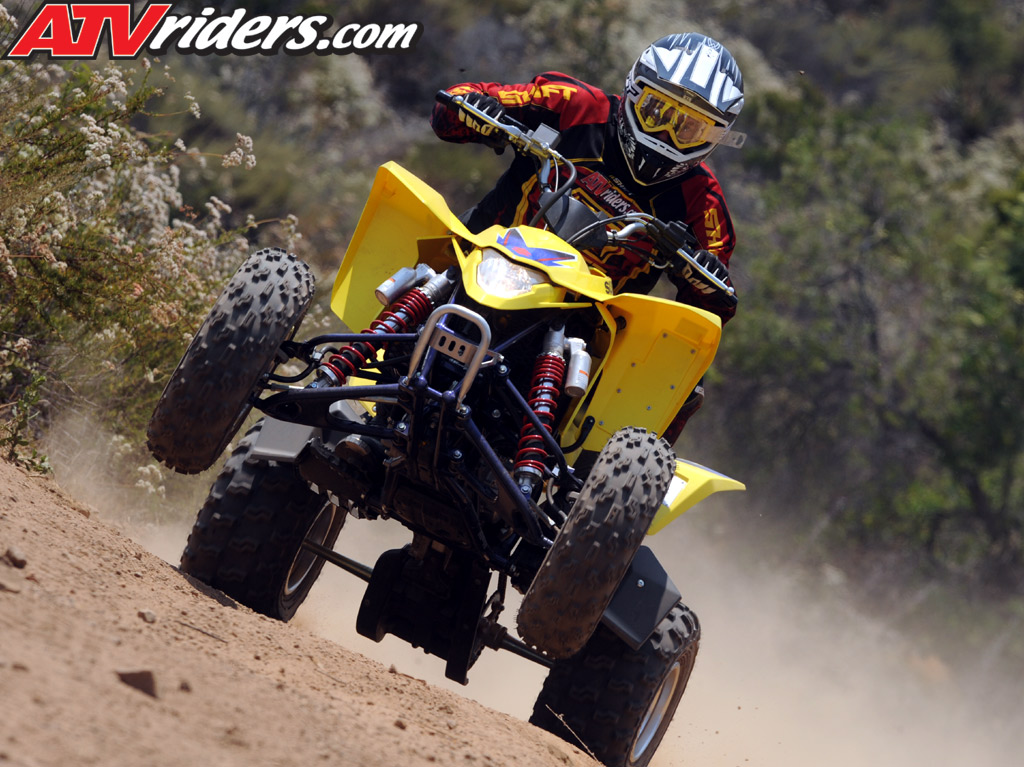 Suzuki Quadsport For Sale