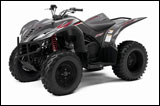 Red/Gray 2008 Yamaha Wolverine 450 Sport ATV